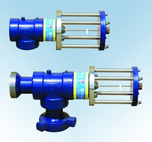 Rupture Pin Slurry Valve