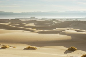 Sand dunes in the Sahara present complexity, remoteness and a challenging EPC  environment.