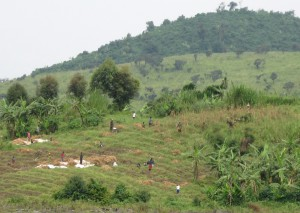 Resource projects are less likely to be delayed by controversy if stakeholders such as these farmers in central Africa are brought into the planning process early in a project's development. Image by Carl Friesen)